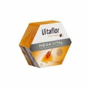 Vitaflor jalea real mega vital (1500 mg 200 ml 20 viales)