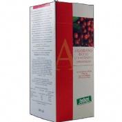Arandano rojo cranberry jugo concentrado (490 ml)