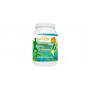 Gervital colageno marino + glucosamina (500 g)