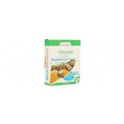 Curcuma 24 capsules nutrabasicos drasanvi